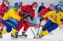 Хоккей с мячом, Чемпионат мира-2019, финал, Швеция-Россия, 02.02.19. Повторится ли тенденция с завоеванием золота хозяевами?