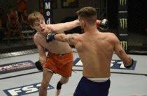Прогноз на ММА, UFC-251. Митчелл – Роса, 10.05.2020