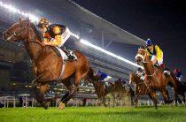 Четыре лучших сайта для ставок на конные скачки
