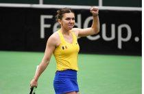 Прогноз на теннис, женский Премьер в Майами, Ван Цян – Халеп, 27.03.19. Достаточно ли восстановилась румынка, чтобы претендовать на титул?