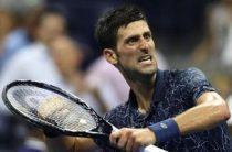 Прогноз на теннис, Финал АТР в Лондоне. Джокович – Иснер, 12.11.18. Помогут ли Джону убойные подачи?
