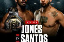 UFC 239: Тиаго Сантос против Джона Джонса. Прогноз
