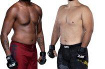 UFC ON ESPN 3. Поединок между Джастином Ледетом и Далчей Лунгиамбулой. Прогноз на бой