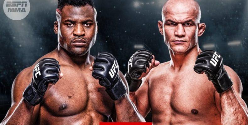 UFC 239. Прогноз на бой между камерунцем Фрэнсисом Нганну и бразильским спортсменом Джуниором Дос Сантососм